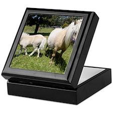 Mini Pony 12 Keepsake Box