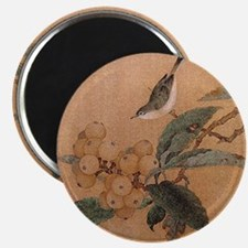 Asian Wren Magnet