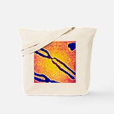 X chromosome Tote Bag
