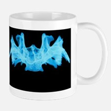 X-ray image of a human sphenoid bone Mug