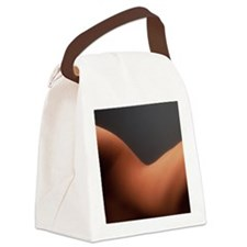 Woman's waist Canvas Lunch Bag