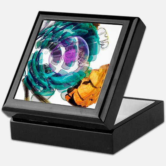 Animal cell, artwork Keepsake Box