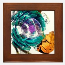 Animal cell, artwork Framed Tile