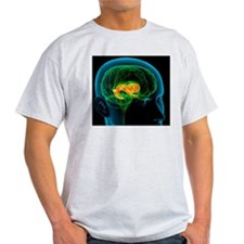 Cingulate gyrus in the brain, artwor T-Shirt