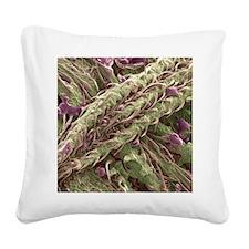 Cannabis plant, SEM Square Canvas Pillow