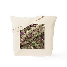 Cannabis plant, SEM Tote Bag