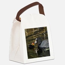 Adult coot feeding its chick Canvas Lunch Bag