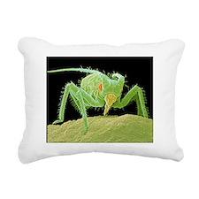 Aphid feeding on a leaf Rectangular Canvas Pillow