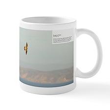 001-7V5Z8277-Peregrine Falcon Mug