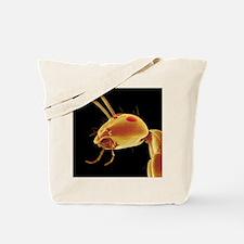 Ant head, SEM Tote Bag