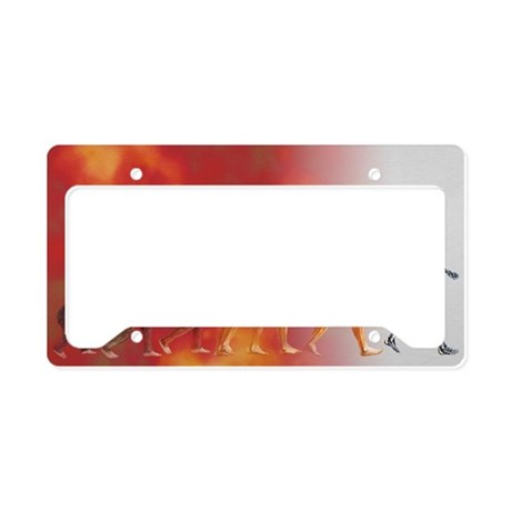 Artificial intelligence License Plate Holder