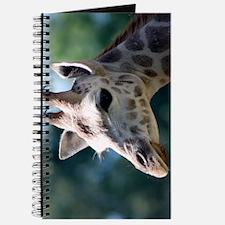 Rothschild Giraffe iPhone 3G Case Journal