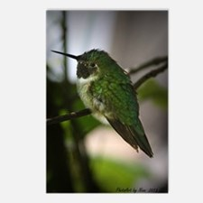 Tiny Hummingbird Postcards (Package of 8)
