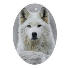 White Wolf Oval Ornament