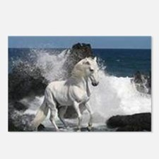 Ocean Stallion  Postcards (Package of 8)