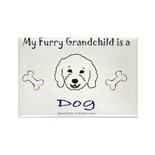 furry grandchild - more breeds Rectangle Magnet
