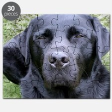 Black Labrador Retriever Puzzle