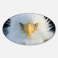 Eagle Sticker (Oval)
