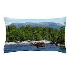 11x17_print 3 Pillow Case