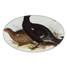 Black Grouse Painting Decal