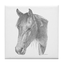 Black Jack Paint Horse Tile Coaster