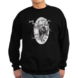 National parks Sweatshirt (dark)