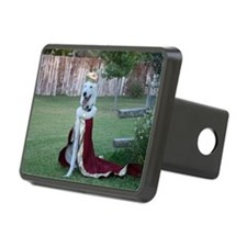 King Nigel Hitch Cover