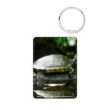 Tree Hugging Turtle Keychains