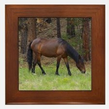 Wild Horse Framed Tile