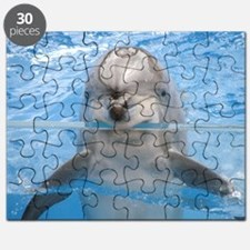 Dolphin Rug Puzzle