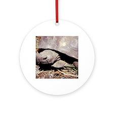 Land Tortoise Round Ornament