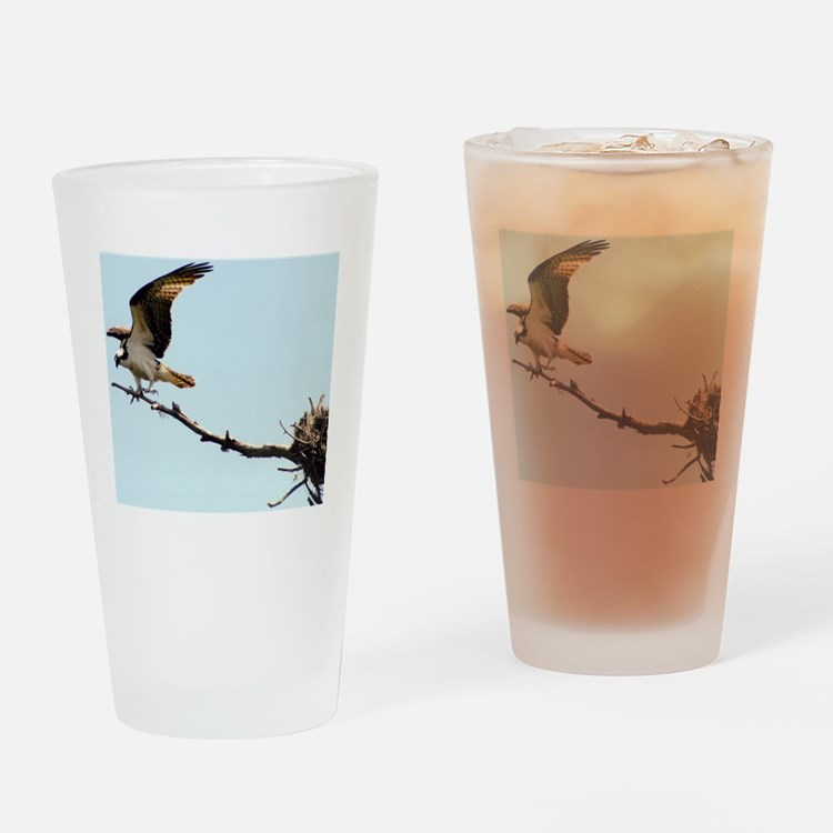 Osprey Landing Drinking Glass