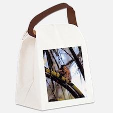 Palm Squirrel Canvas Lunch Bag