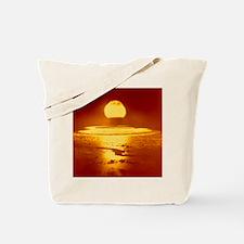 Bikini Atoll atomic bomb explosion 1946 Tote Bag