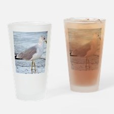 Seagull Drinking Glass