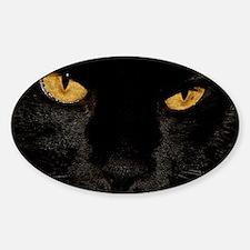 Sexy Black Cat Decal