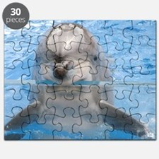 Dolphin 60x60 Puzzle