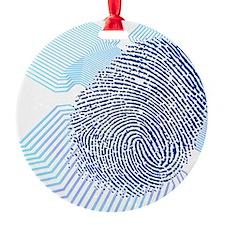 Biometric fingerprint scan, artwork Ornament