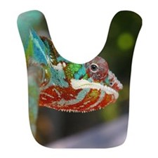 Chameleon Looking Bib