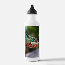 Chameleon Looking Water Bottle