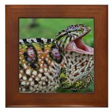 cover3_original Framed Tile