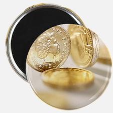 British one pound coins Magnet