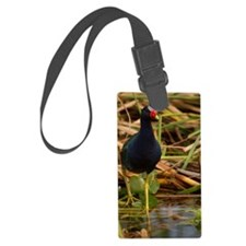 Purple Gallinule Luggage Tag
