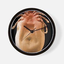 Brown dog tick, SEM Wall Clock
