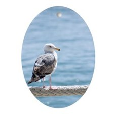 Seagull By The Water Oval Ornament