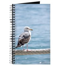 Seagull By The Water Journal