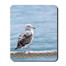 Seagull By The Water Mousepad