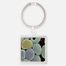 Calcareous phytoplankton, SEM Square Keychain