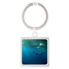 Manta Ray Swims in the water Square Keychain