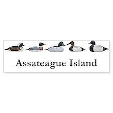 Assateague Island Decoys Bumper Bumper Stickers